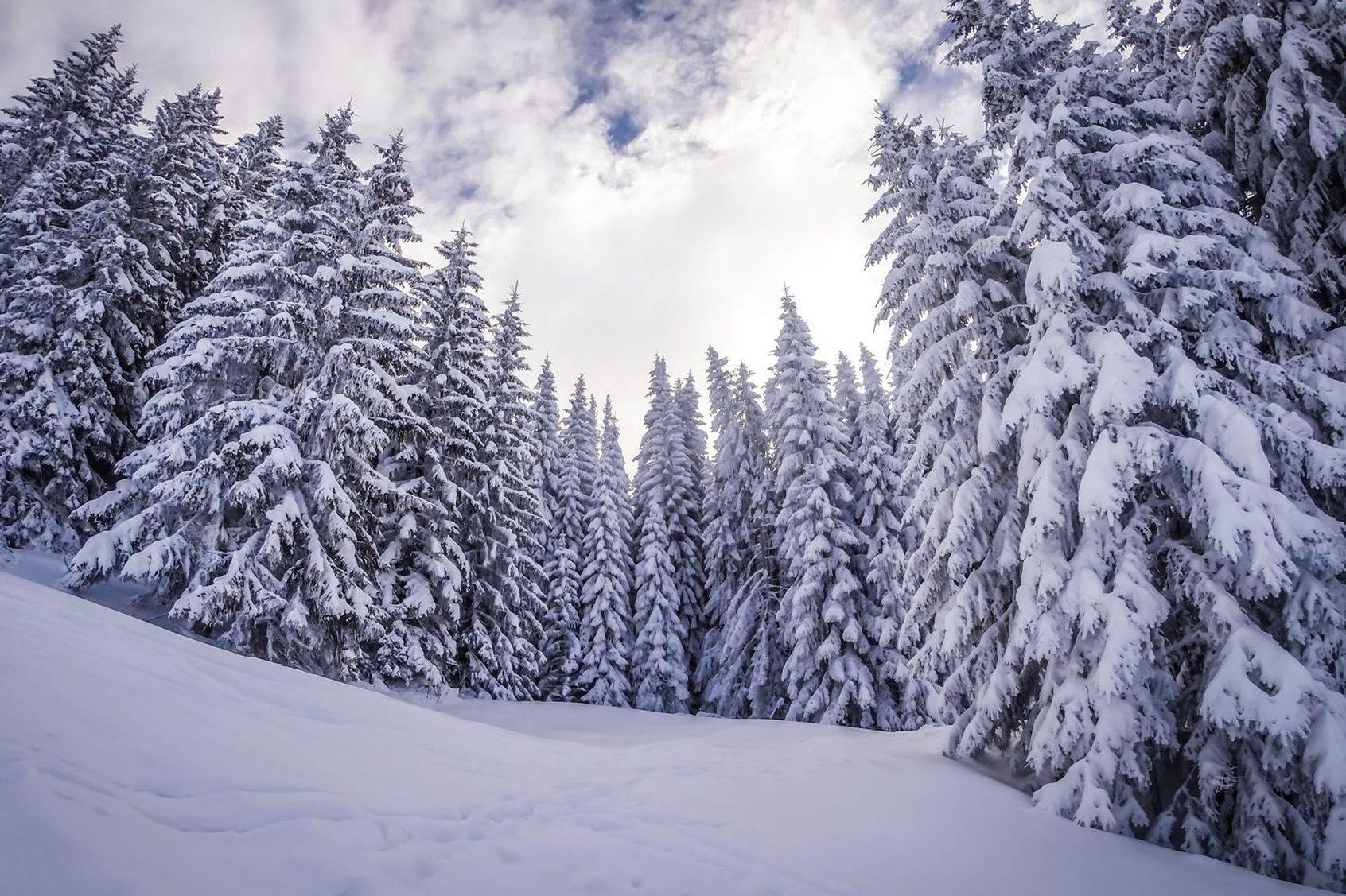 Hiver 2018-2019 en montagne : le bilan de la saison